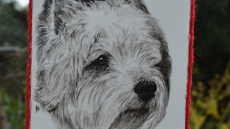 (Polski) West Highland White Terrier