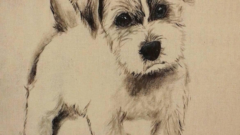 T-shirt -Jack Russel Terrier